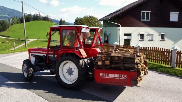 Holzeinlagerung - Der Winter kann kommen