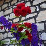Vom Duft der Rosen werden Sie empfangen.