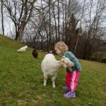 Wenn Kinder und Tiere Freundschaft schließen