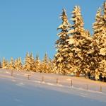 Winterlandschaft im Almenland