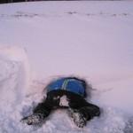...nicht nur bauen im Schnee macht Spaß! Kinderbauernhof Perhofer