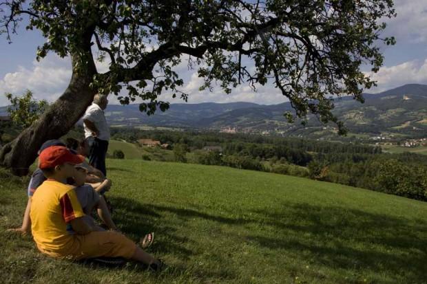 Landschaft PöllauerTal - Josef Moritz